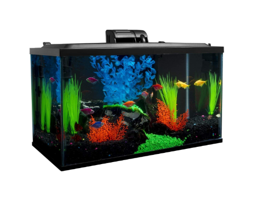 GLOFish Tank kit - 10 gallon fish tank