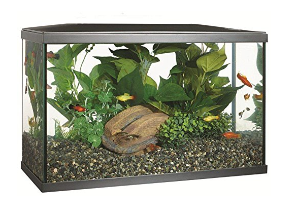 Marina LED Aquarium - 10 gallon fish tank
