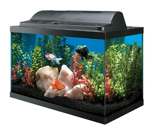 All Glass Aquarium Tank and Eco Hood Combo