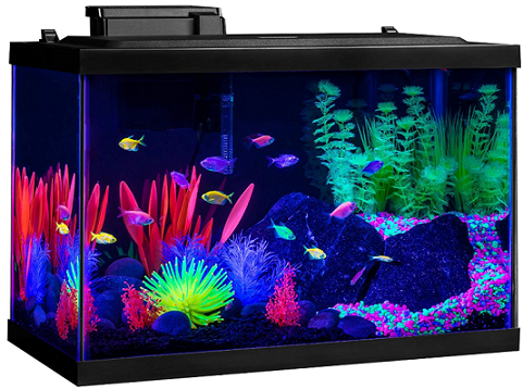 Fish Aquarium Kit 10 Gallon Kit – with Filter and Conditioner