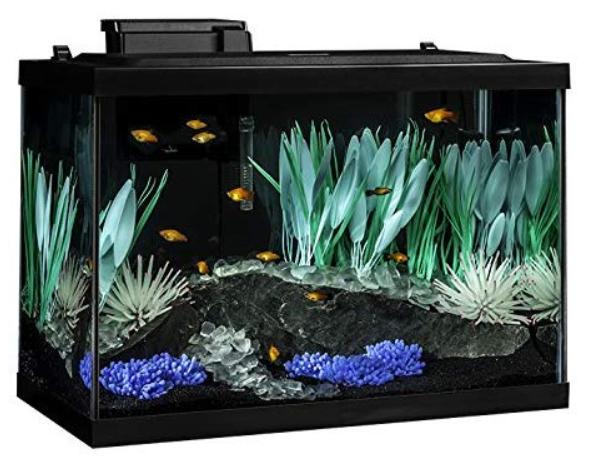 Tetra 20 Gallon Complete Aquarium kit