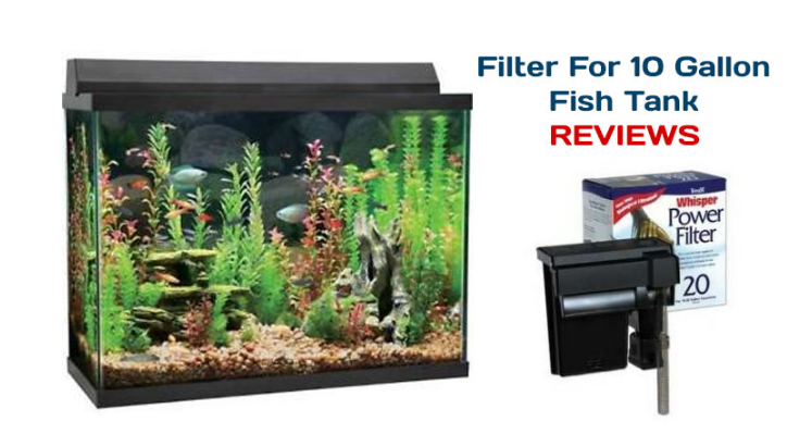 Best 10 gallon fish tank filter