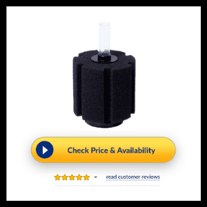 10 gallon fish tank filter review