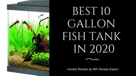 best 10 gallon fish tank in 2020
