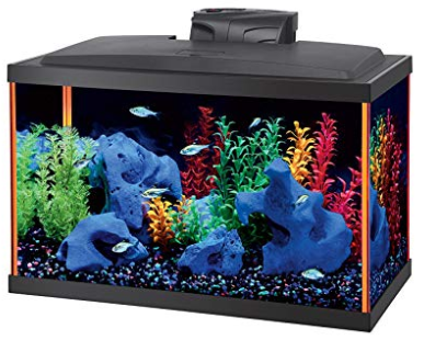 Best Aqueon Fish Aquarium Starter Kit Led Neoglow