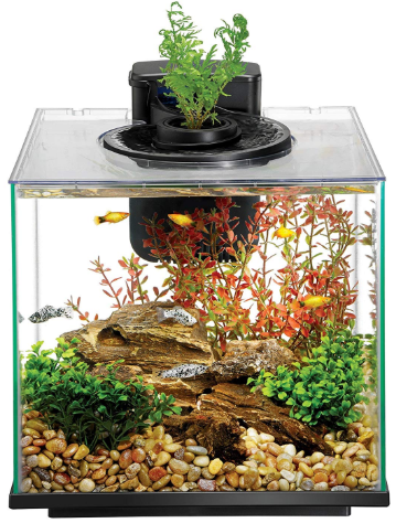 Aqueon Led Aqua Springs Aquarium Fish Tank Starter Kit